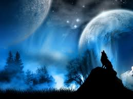WOLF HOWLING 3